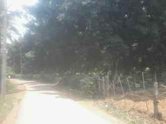 Residential Land for Sale in Kannur, Iritty, Edoor, Keezhpally