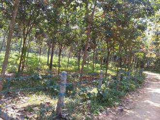 Commercial Land for Sale in Pathanamthitta, Adoor, Adoor, Mannady