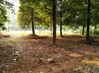 Residential Land for Sale in Ernakulam, Perumbavoor, Koovappady