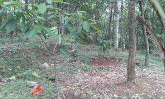Residential Land for Sale in Kottayam, Kottayam, Manipuzha, Mukkoottuthara Kot  road