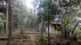 Residential Land for Sale in Trivandrum, Neyyattinkara, Nellimoodu, Kuttukal, Attaramoola