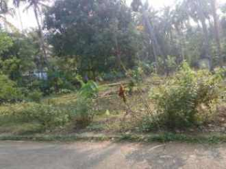 Residential Land for Sale in Thrissur, Kodakara, Kodaly, munnumuri