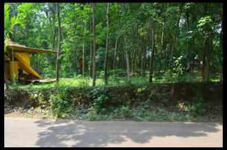 Residential Land for Sale in Pathanamthitta, Adoor, Thatta