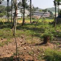 Residential Land for Sale in Idukki, Kumily, Kumily, Chelimada- First Mile Road