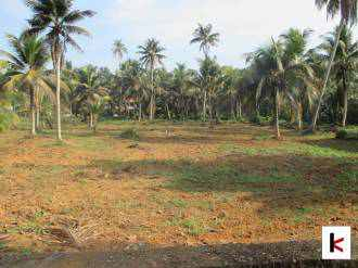 Residential Land for Sale in Pathanamthitta, Thiruvalla, Karackal
