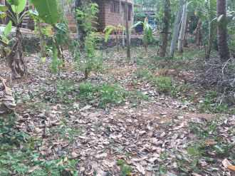 Residential Land for Sale in Ernakulam, Piravom, Piravom