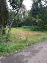Residential Land for Sale in Alleppey, Chengannur, Cheriyanad, Kulikampalam