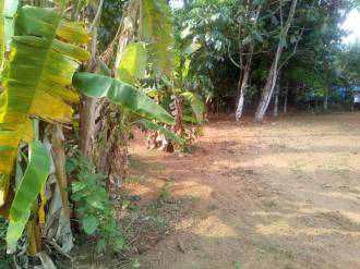 Residential Land for Sale in Ernakulam, Nedumbassery, Nedumbassery, Nedumbassery