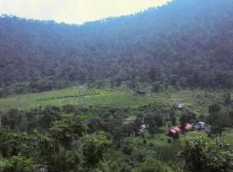 Agricultural Land for Sale in Idukki, Munnar, Marayoor