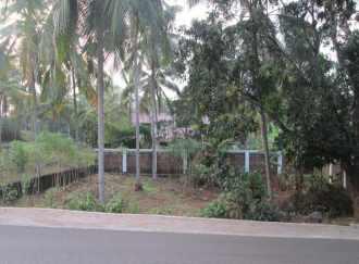 Residential Land for Sale in Kozhikode, Kunnamangalam, Karanthur