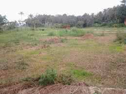 Residential Land for Sale in Kottayam, Pampady, Pampady, 14 th Mile