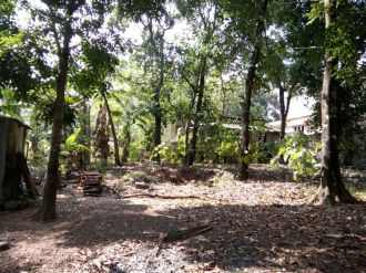 Residential Land for Sale in Kottayam, Changanassery, Kurichy, 40  junction