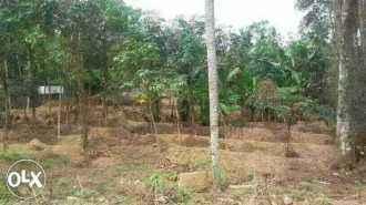 Residential Land for Sale in Pathanamthitta, Pathanamthitta, Elavanthitta