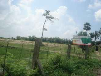 Residential Land for Sale in Palakad, Kanjikode, Kanjikode
