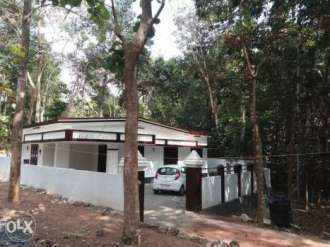 Residential House/Villa for Sale in Kottayam, Changanassery, Madappally