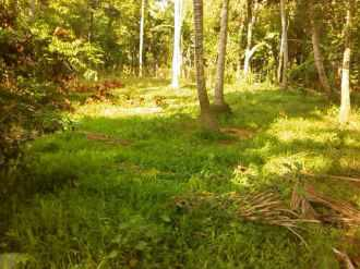 Residential Land for Sale in Pathanamthitta, Thiruvalla, Kuttoor