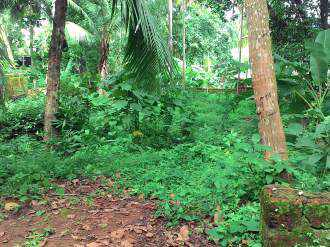 Residential Land for Sale in Kozhikode, Malaparamba , Paroppadi