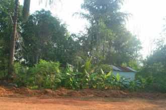 Residential Land for Sale in Trivandrum, Thiruvananthapuram, Thiruvallom, Judgikunnu