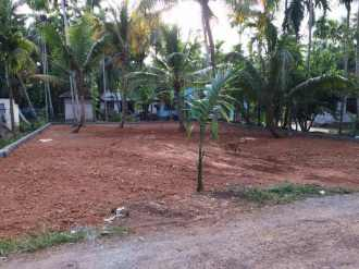Residential Land for Sale in Alleppey, Aroor, Aroor, 4.95 lakh per cent