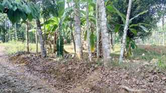 Residential Land for Sale in Idukki, Thodupuzha, Kaliyar, Kaliyar
