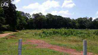 Residential Land for Sale in Palakad, Palakkad, Thennoor