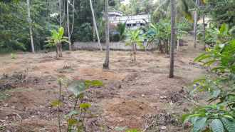 Residential Land for Sale in Trivandrum, Kazhakoottam, Pothencode, Panimoola Temple