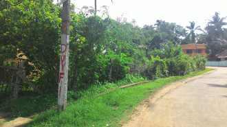 Residential Land for Sale in Palakad, Palakkad, Pudussery, Venoli Road