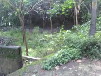 Residential Land for Sale in Kottayam, Kottayam, Athirampuzha, M G University