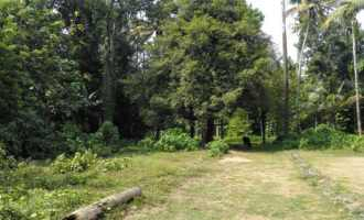 Residential Land for Sale in Ernakulam, Aluva, Aluva, Byepass