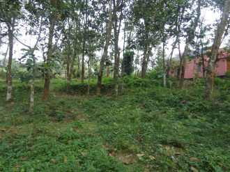 Residential Land for Sale in Pathanamthitta, Adoor, Chanthanapally