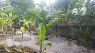Residential Land for Sale in Trivandrum, Thiruvananthapuram, Kalady