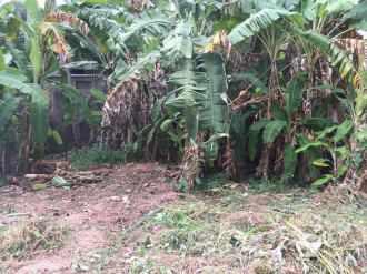 Residential Land for Sale in Trivandrum, Thiruvananthapuram, Peyad, Peyad