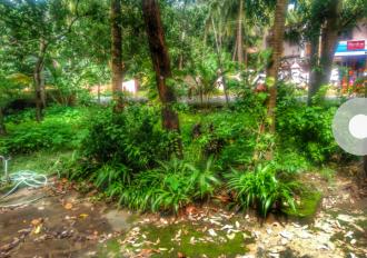 Residential Land for Sale in Kannur, Kannur, Kalliassery, Irinave