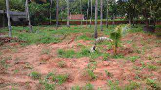 Residential Land for Sale in Trivandrum, Varkala, Varkala, Kappil