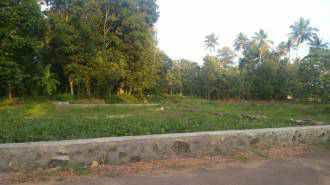 Residential Land for Sale in Ernakulam, Chottanikkara, Thiruvamkulam