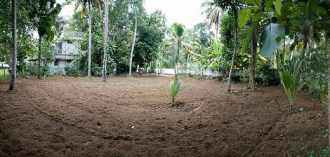 Residential Land for Sale in Kollam, Karunagapally, Thazhava, Sree buddha - Thazhava State highway