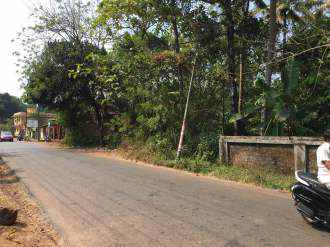 Residential Land for Sale in Kottayam, Changanassery, Changanassery, Chingavanam Paruthumpara road