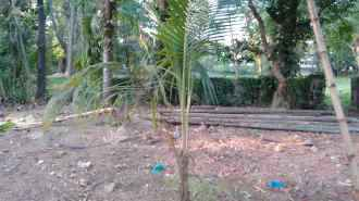 Residential Land for Sale in Ernakulam, Kalammassery, Eloor, Depot road