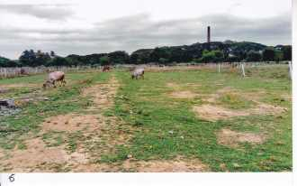 Residential Land for Sale in Kozhikode, Medical College, Medical college