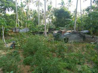 Residential Land for Sale in Trivandrum, Kazhakoottam, Kazhakkoottam, trippadapuram