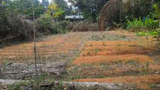 Residential Land for Sale in Thrissur, Mala, Kundayi