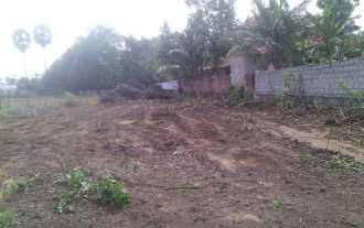 Residential Land for Sale in Palakad, Palakkad, Kannadi