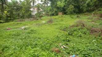 Residential Land for Sale in Ernakulam, Aluva, Aluva, NAD juction