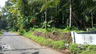 Residential Land for Sale in Kottayam, Pala, Kollappally