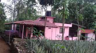 Residential House/Villa for Sale in Kottayam, Pala, Kottaramattam