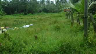 Residential Land for Sale in Ernakulam, Ernakulam town, Kundanoor