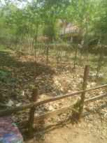Residential Land for Sale in Kottayam, Ettumanoor, Neendoor, Pravattom