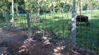 Residential Land for Sale in Ernakulam, Kumbalam, Aroor, Arookutty