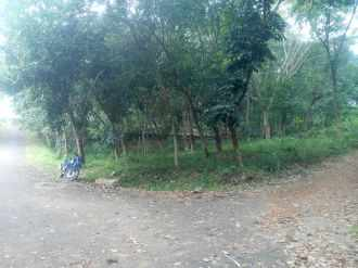 Agricultural Land for Sale in Trivandrum, Thiruvananthapuram, Kattakkada, kattakode
