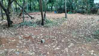 Residential Land for Sale in Kannur, Payyanur, Kunchimangalam , Ezhilode